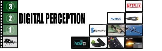 Digital Perception - Logo